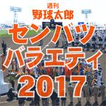 週刊野球太郎 高校野球・ドラフト情報#7 記事画像#16