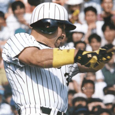 《週刊野球太郎検索ランキング》阪神・ロサリオがお騒がせ助っ人のグリーンウェルをよみがえらせた!?