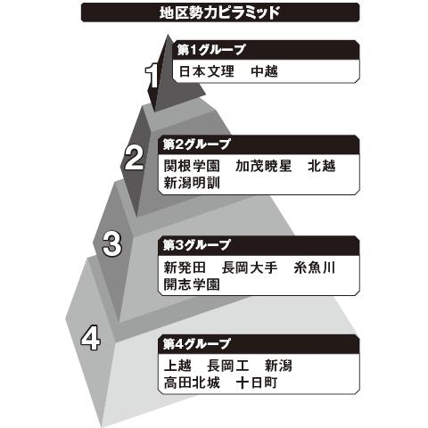新潟 勢力ピラミッド